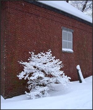 Brick House Fabrics in Winter