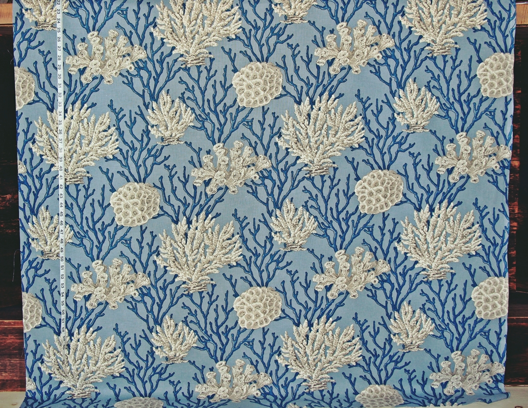 White Coral on a Blue Background