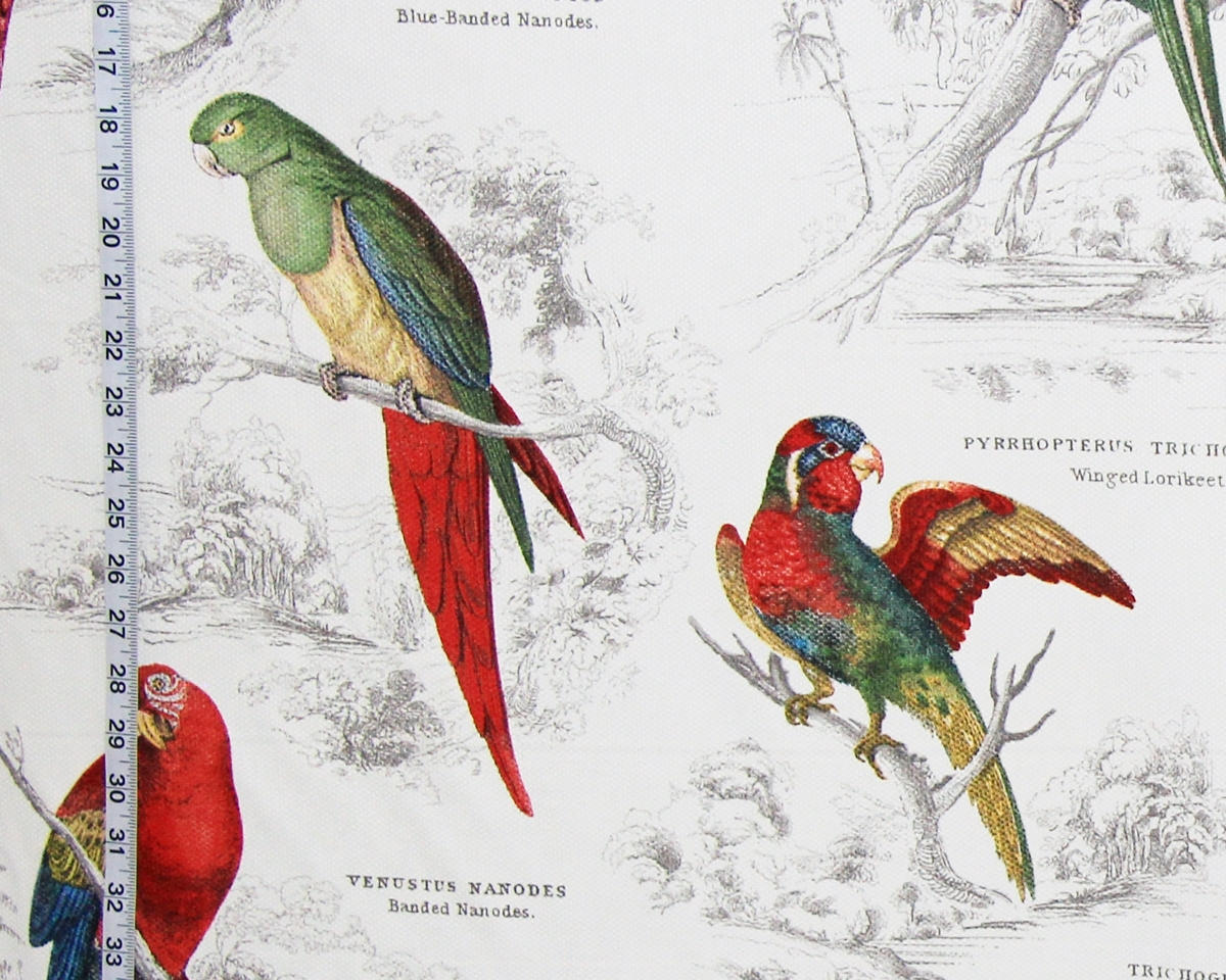 TROPICAL PARROT TOILE FABRIC