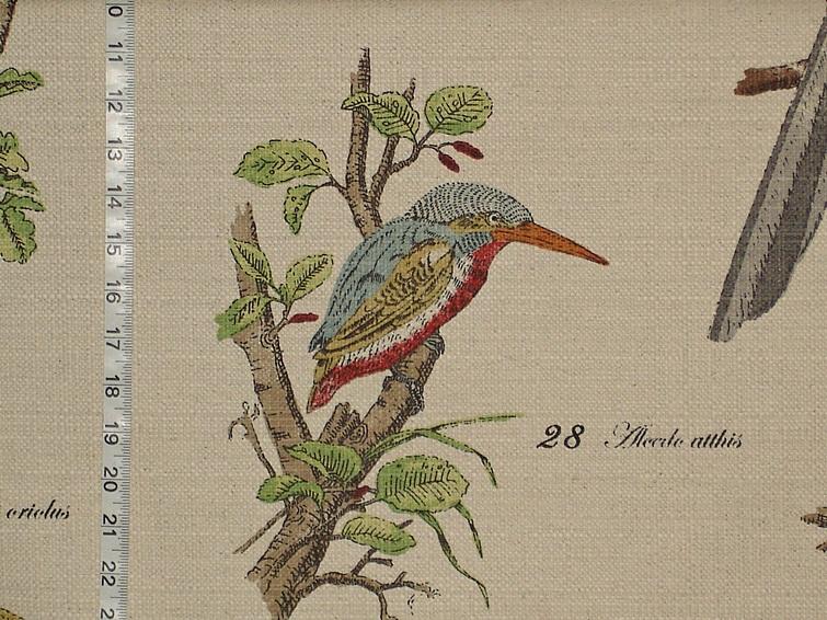 Bird fabric Kingfisher