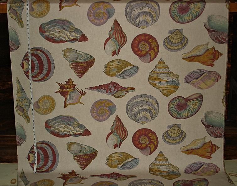 Nautilus fabric